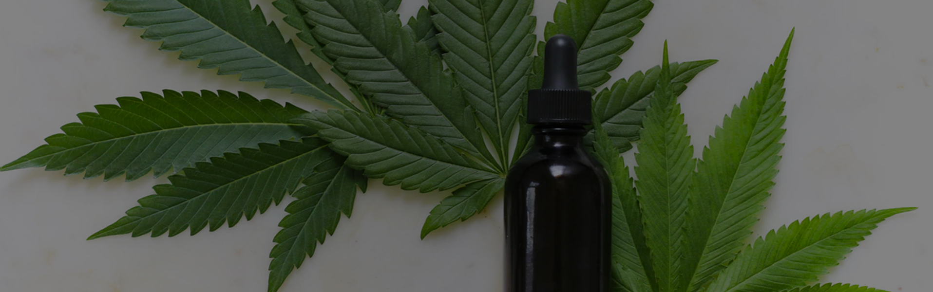 Shipping CBD Oil: Is It Legal? | ShipCalm